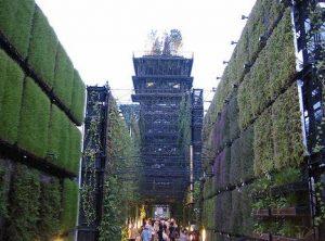Vertikalus sienų želdinimas. Japonija, Bio Lung